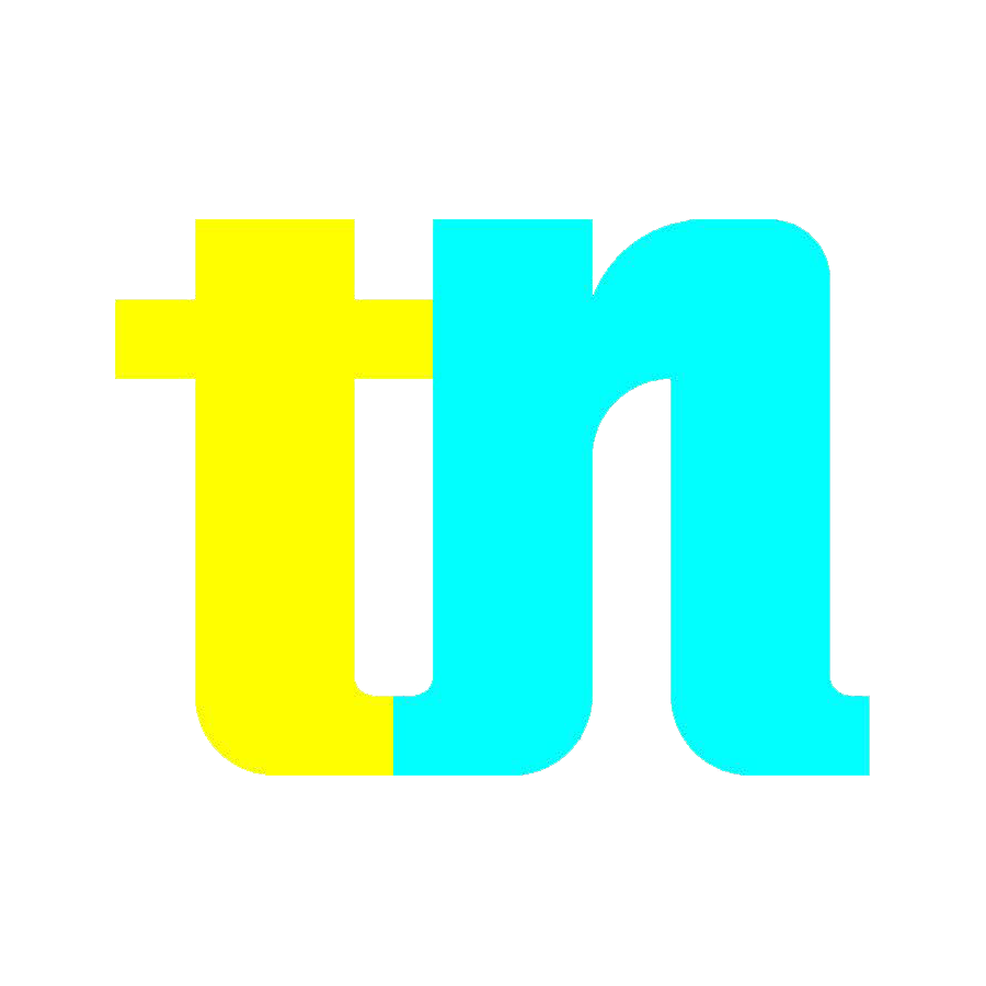 Transfernation logo